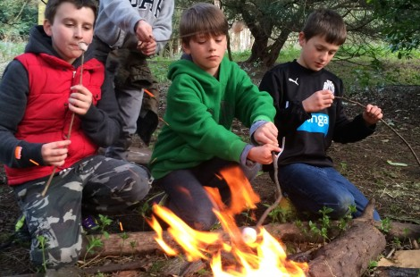 Learn bushcraft skills near Harrogate with Live For Today at Ripley Castle