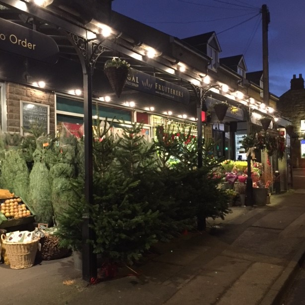 The Locals Guide To Christmas Trees In Harrogate Baltzersens
